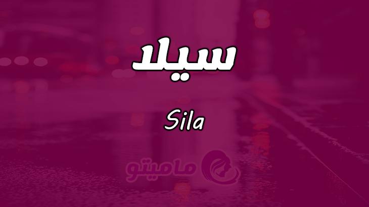 بالصور معنى اسم سيلا , تفسير اسم سيلا 126