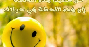 بالصور عبارات عن السعادة , بالصور اجمل العبارات التى قيلت عن السعاده 145 13 310x165