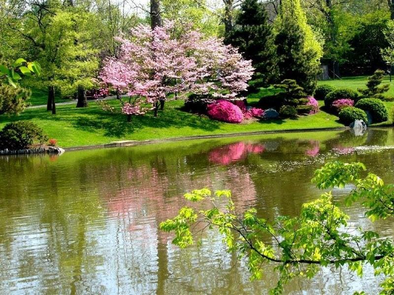 بالصور اجمل صور الطبيعة , اجمل صور الطبيعه الساحره 220 1