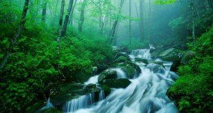 صور اجمل صور الطبيعة , اجمل صور الطبيعه الساحره