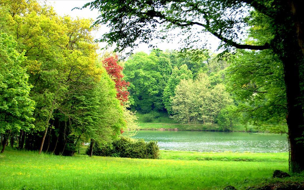 بالصور اجمل صور الطبيعة , اجمل صور الطبيعه الساحره 220 3
