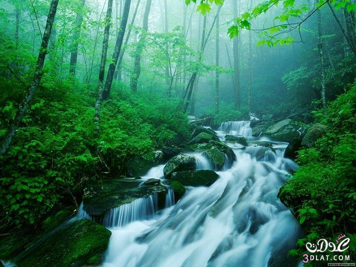 صوره اجمل صور الطبيعة , اجمل صور الطبيعه الساحره