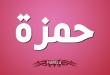 بالصور معنى اسم حمزة , تعرف على معنى وصفات اسم حمزة 2034 1 110x75
