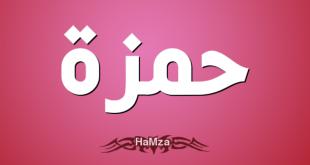 معنى اسم حمزة , تعرف على معنى وصفات اسم حمزة