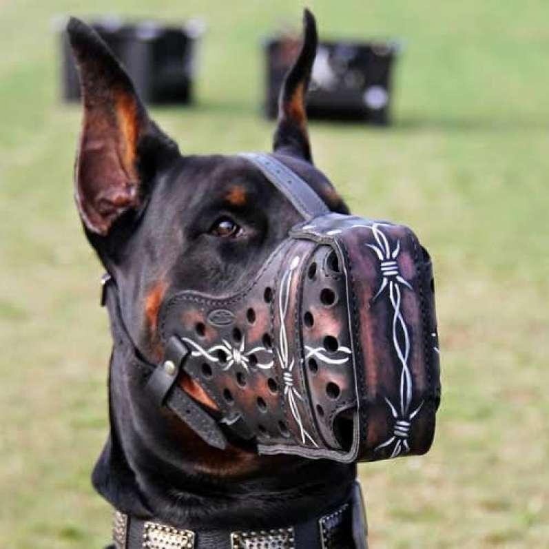 بالصور اشرس انواع الكلاب , شاهد بالصور اخطر الكلاب الفتاكة 2048 7
