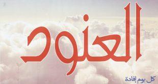 صوره معنى اسم العنود , تفسير اسم عنود