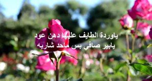 بالصور كلمات من ورود , شاهد اجمل كلمات وردية ورومانسية 405 15 310x165