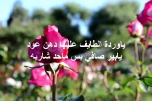 بالصور كلمات من ورود , شاهد اجمل كلمات وردية ورومانسية 405 15 310x205