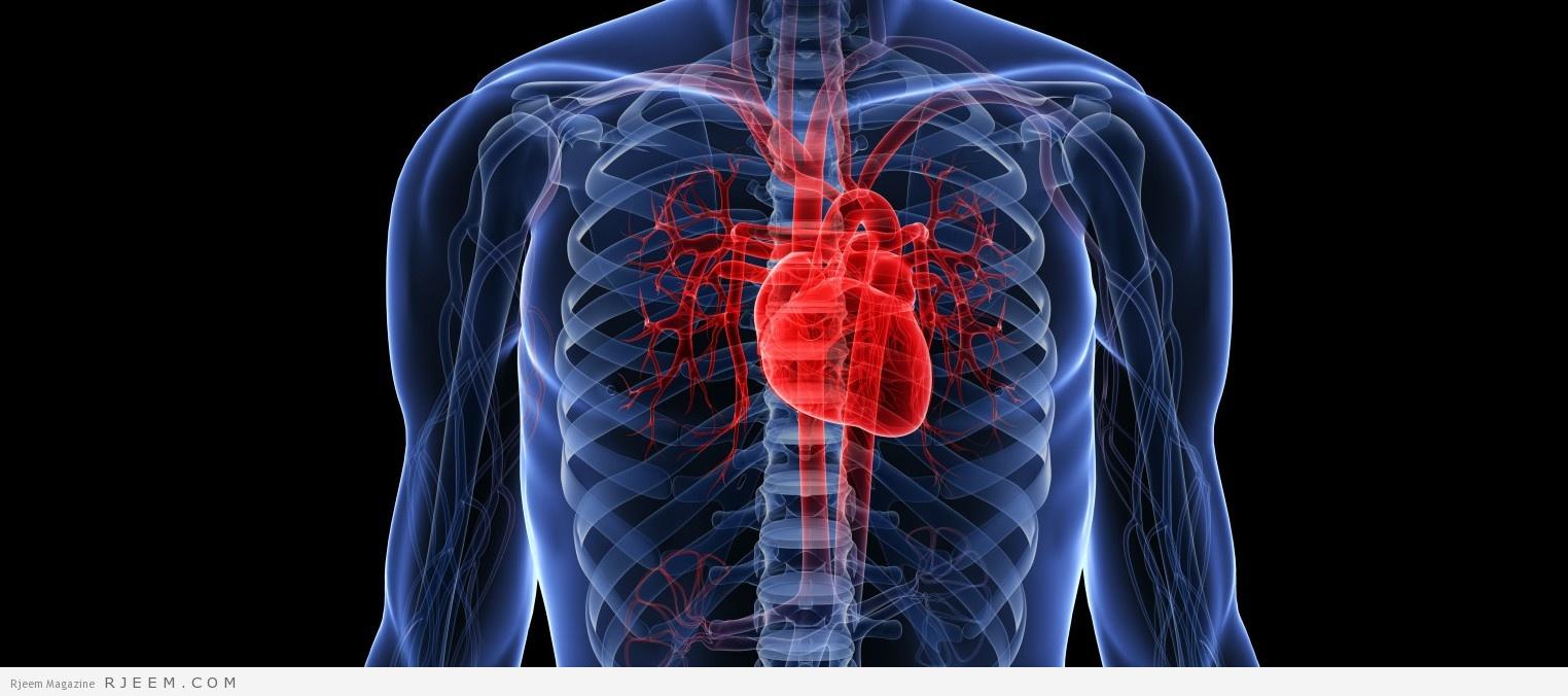 بالصور سكته قلبيه , شاهد بالفيديو اسباب السكته القلبية 445 2
