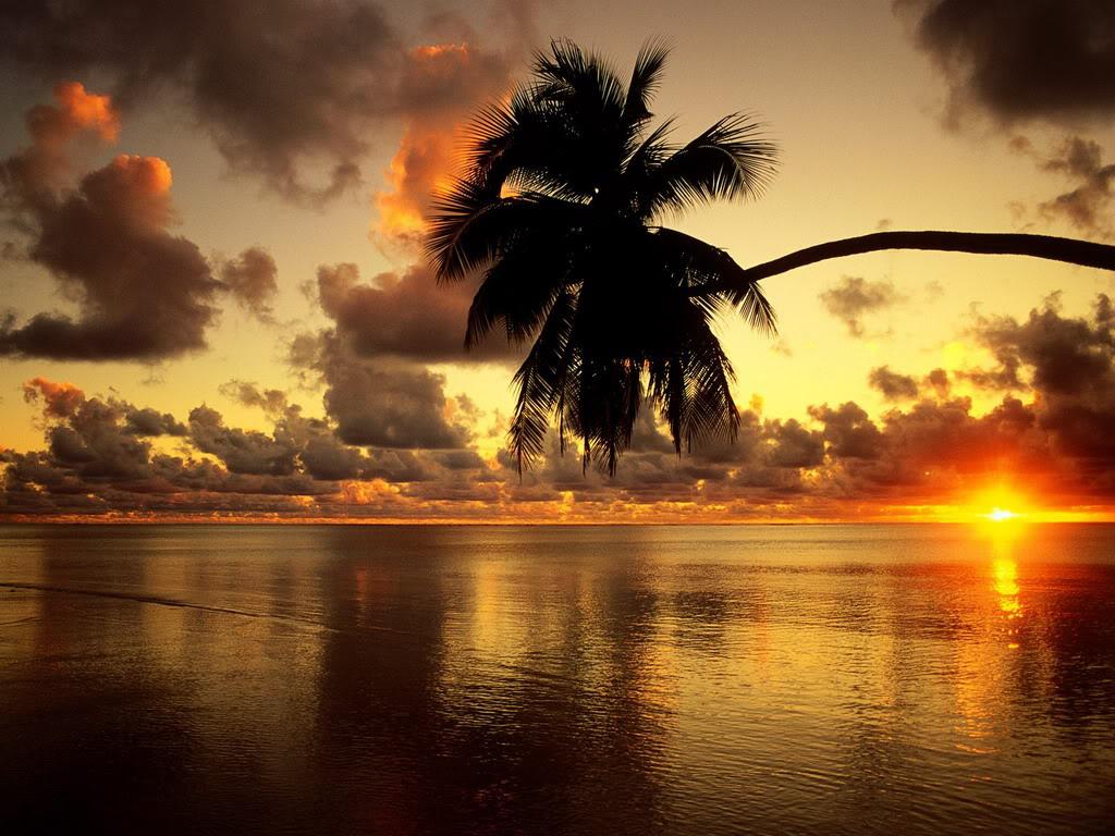 بالصور جمال الطبيعة , شاهد بالصور ابداع الخالق فى جمال الطبيعة 454 3