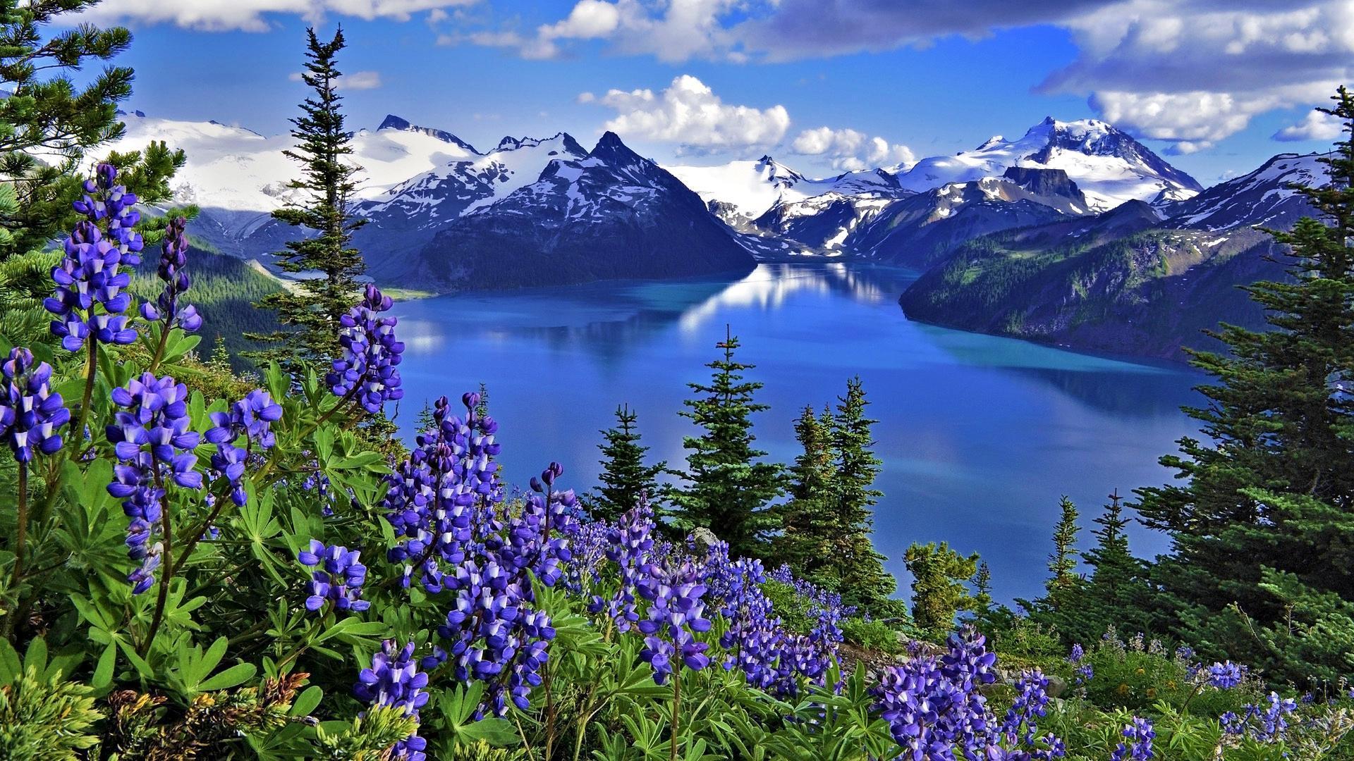 بالصور جمال الطبيعة , شاهد بالصور ابداع الخالق فى جمال الطبيعة 454 5