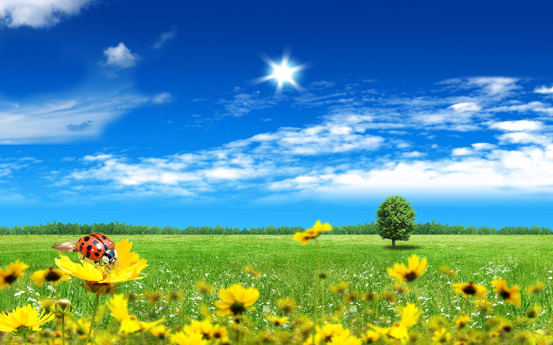 بالصور جمال الطبيعة , شاهد بالصور ابداع الخالق فى جمال الطبيعة 454 6