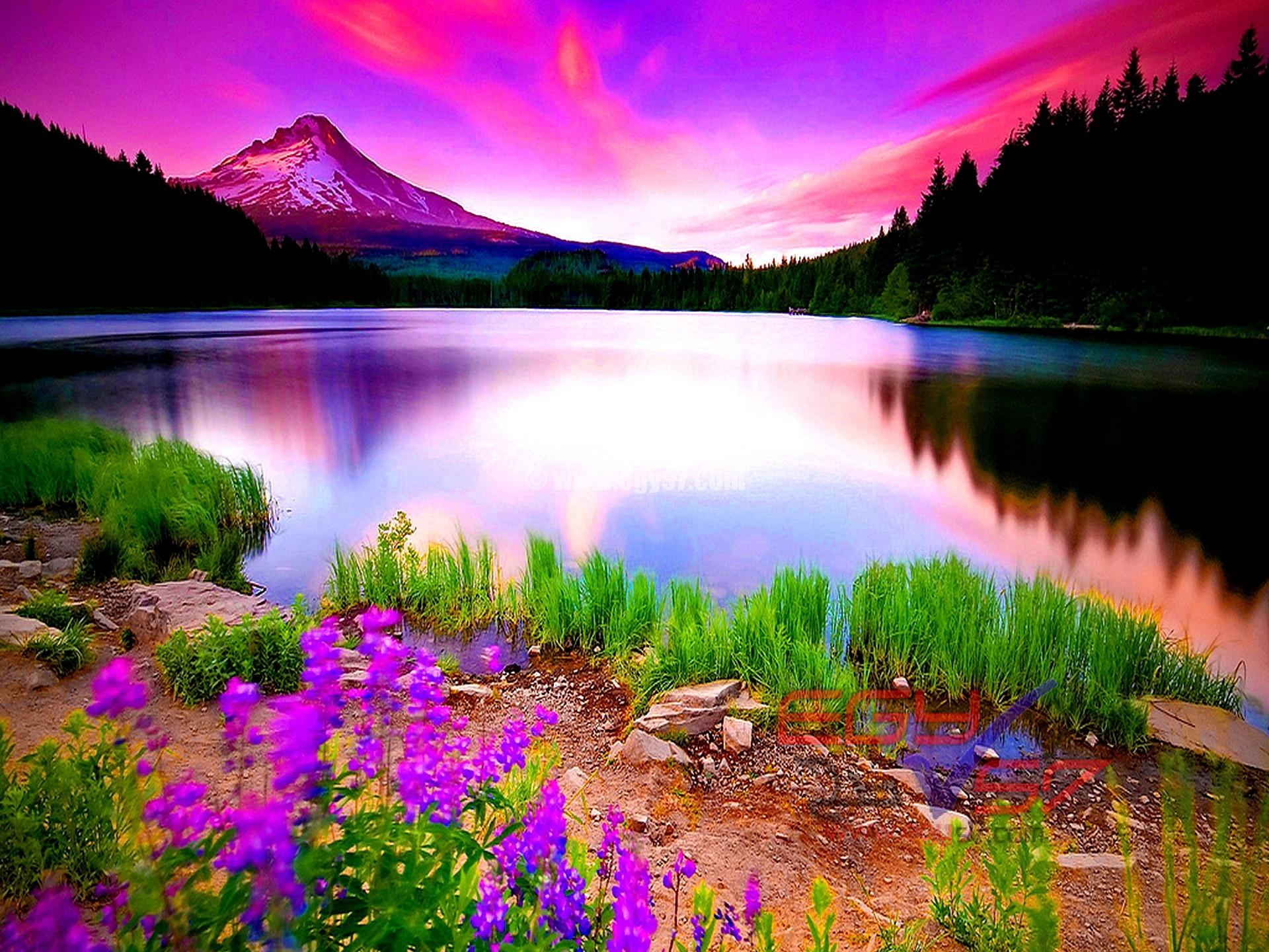بالصور جمال الطبيعة , شاهد بالصور ابداع الخالق فى جمال الطبيعة 454 7