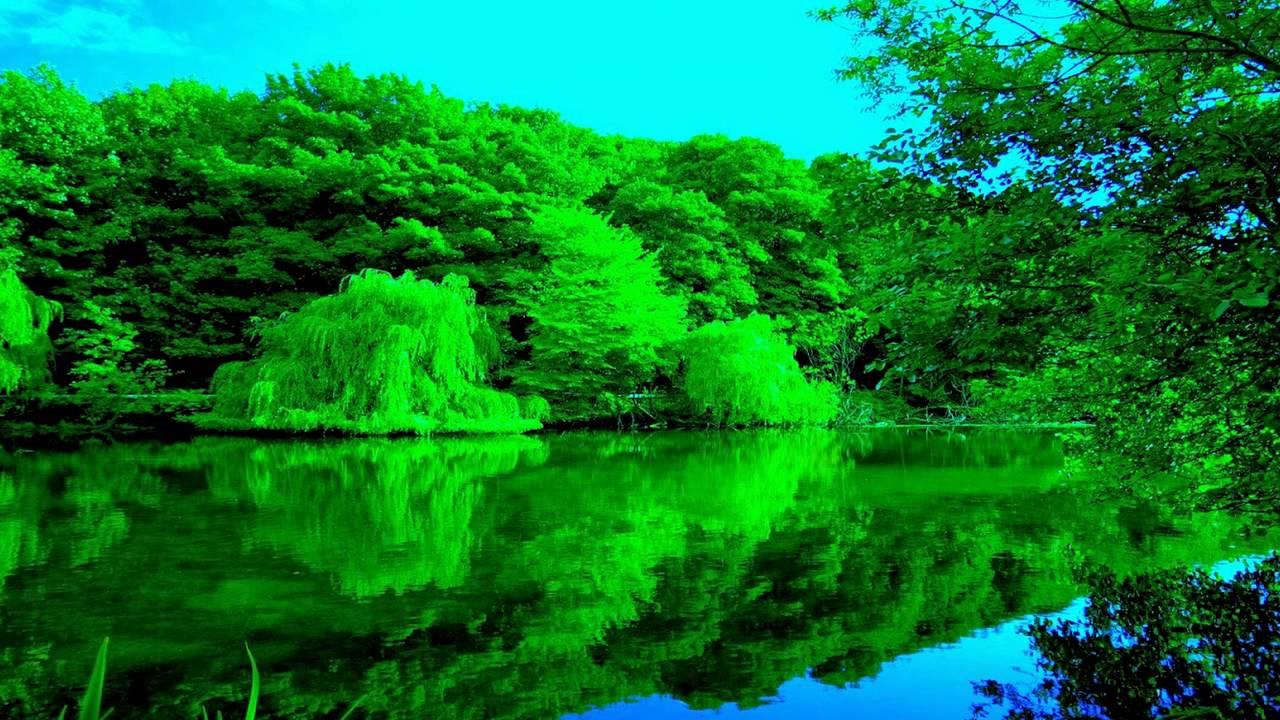 بالصور اروع الصور للطبيعة , شاهد بالصور ابداع الخالق فى الطبيعة 467 5