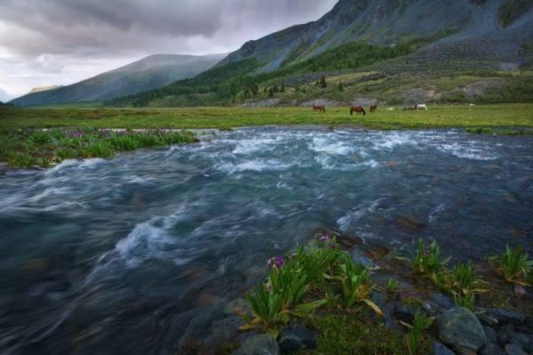 بالصور صور منظر طبيعي , من اجمل المناظر الطبيعيه 50 3