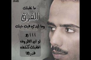 بالصور قصائد حامد زيد , من اجمل ما غنى حامد زيد من قصائده 81 4 310x205