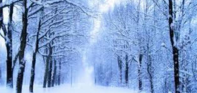 صور صور فصل الشتاء , اجمل صور للمطر و الطبيعه في الشتاء