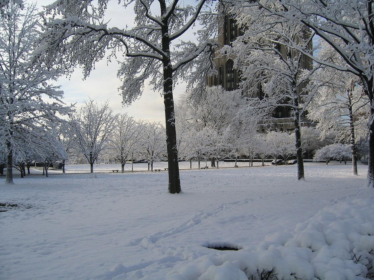 بالصور صور فصل الشتاء , اجمل صور للمطر و الطبيعه في الشتاء 1653 12