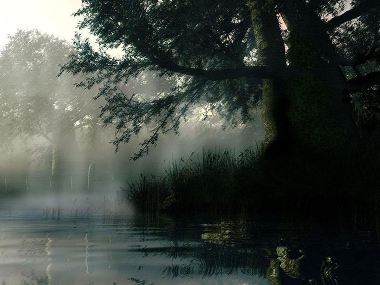 بالصور صور فصل الشتاء , اجمل صور للمطر و الطبيعه في الشتاء 1653 3