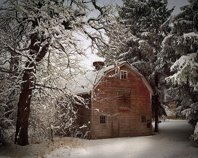 بالصور صور فصل الشتاء , اجمل صور للمطر و الطبيعه في الشتاء 1653 5