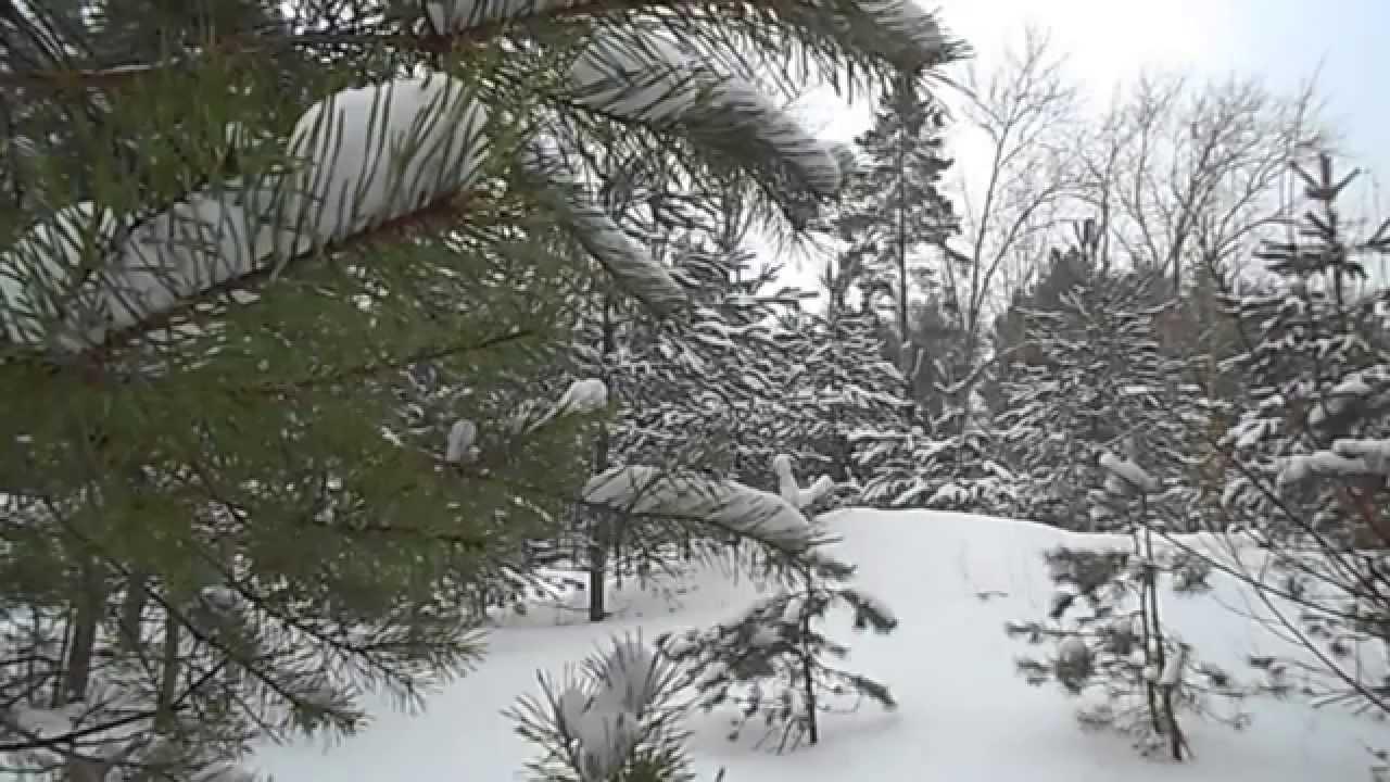 بالصور صور فصل الشتاء , اجمل صور للمطر و الطبيعه في الشتاء 1653 6