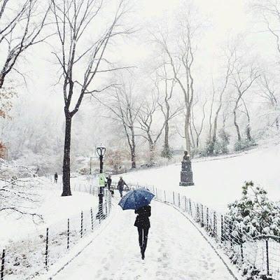 بالصور صور فصل الشتاء , اجمل صور للمطر و الطبيعه في الشتاء 1653 7