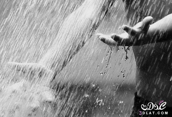 بالصور حب صور , صور حب تحت المطر 1690 4