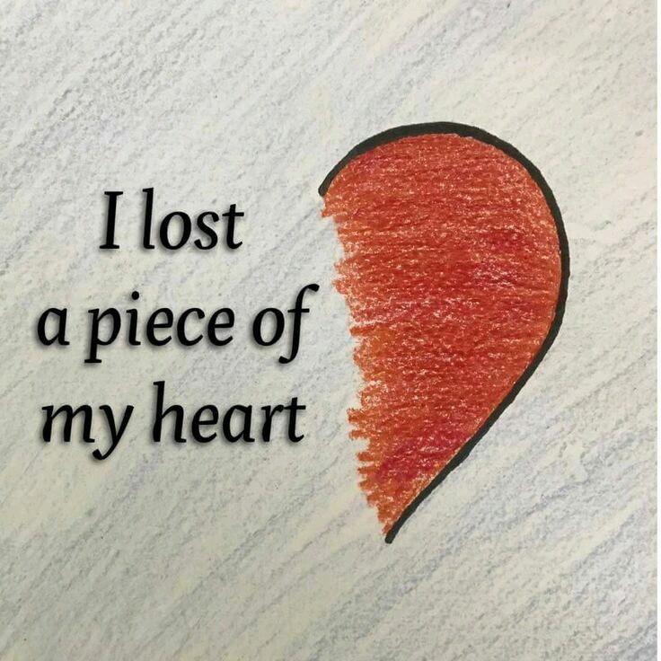 بالصور صور على الحب , شاهد بالصور المشاعر الفياضة التى يصنعها الحب 1820 4