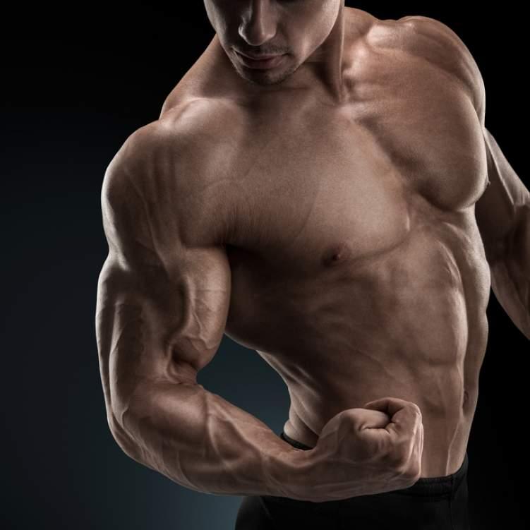 بالصور جسم الرجل , تعرف على اقوى اجسام الرجل 1901 11