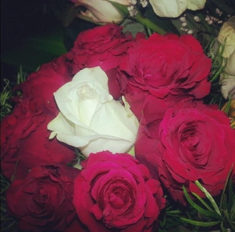 بالصور صور ورد طبيعي , شاهد الرقة الشعرية التى توجد فى الورود 1916 14