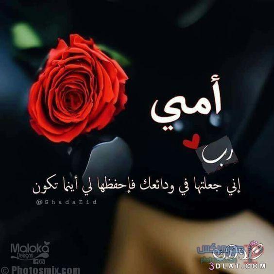 بالصور صور عن الام و الاب , صور لعطف و حنان الام و الاب unnamed file 154