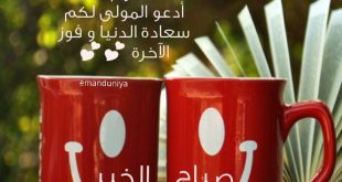 بالصور صباح الخير مسجات , اجمل مسجات جديدة للصباح unnamed file 177 310x165
