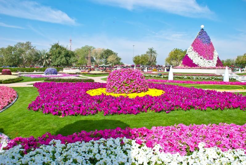 بالصور صور ازهار , اجمل الصور من معارض الزهور حول العالم unnamed file 55