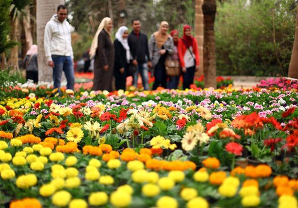 بالصور صور ازهار , اجمل الصور من معارض الزهور حول العالم unnamed file 60