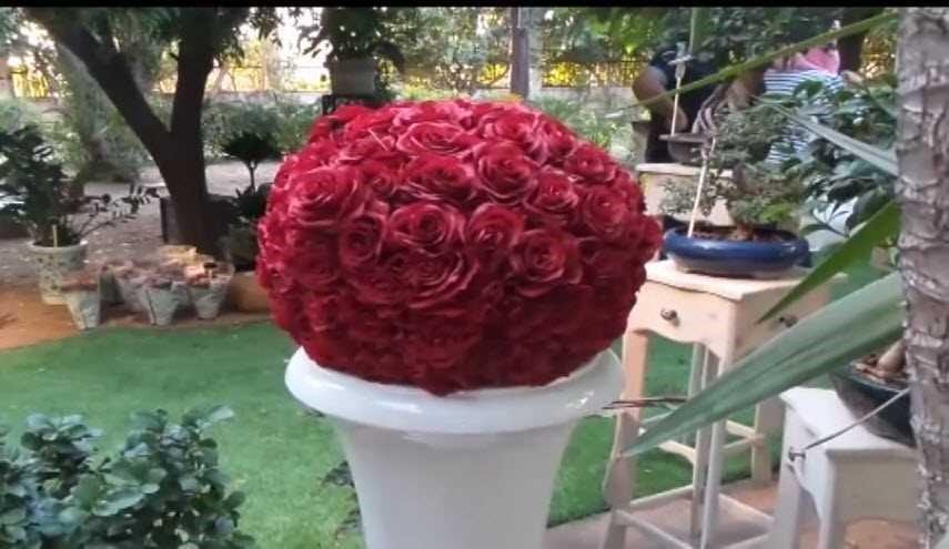 بالصور صور ازهار , اجمل الصور من معارض الزهور حول العالم unnamed file 62