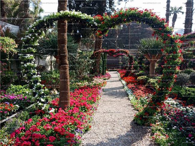 بالصور صور ازهار , اجمل الصور من معارض الزهور حول العالم unnamed file 63