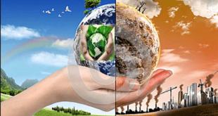 بالصور بحث عن البيئة النظيفة والبيئة الملوثة , معلومات عن البيئة 10487 1 310x165