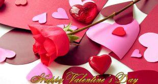 بالصور صور عيد حب , اجمل الخلفيات الرومانسيه 10538 14 1 310x165