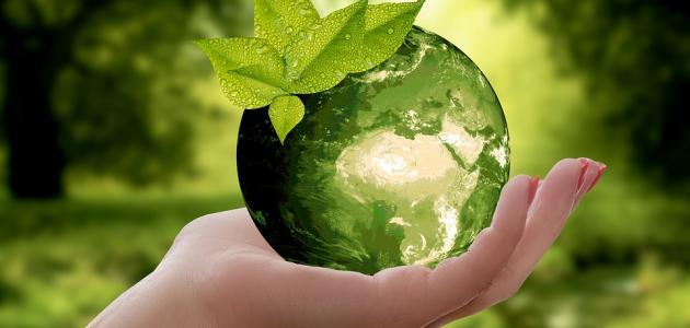 صور ما مقترحاتك للوصول الى بيئة نظيفة , كيفيه المحافظه علي البيئه