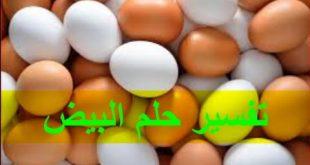 تفسير الحلم البيض , معرفة بالتفصيل رؤية البيض ف المنام