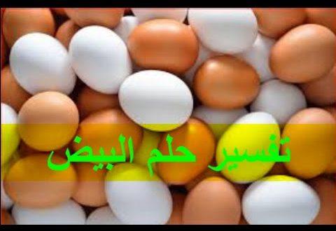 صورة تفسير الحلم البيض , معرفة بالتفصيل رؤية البيض ف المنام