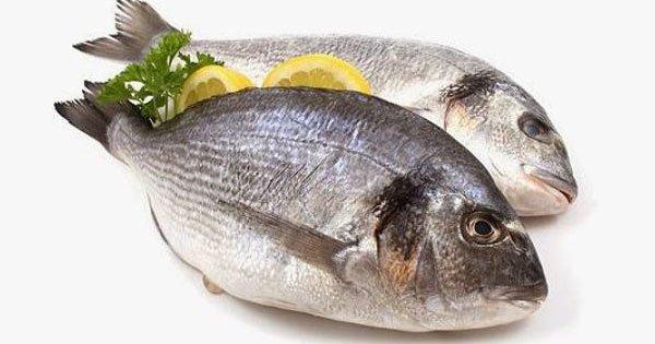 صور تفسير رؤيا السمك لابن سيرين , حلمتي بالسمك في المنام