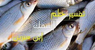 تفسير رؤيا السمك لابن سيرين , حلمتي بالسمك في المنام