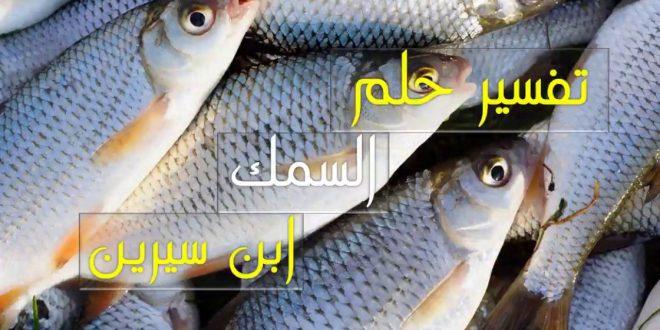 صورة تفسير رؤيا السمك لابن سيرين , حلمتي بالسمك في المنام