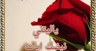 معنى اسم حورية , حورية وجمال الاسم دا وروعته