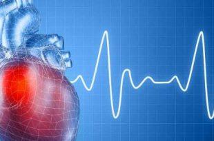 بالصور اعراض عدم انتظام ضربات القلب , ازاي تعرف ان ضربات القلب غير منتظمة 4174 2 310x205
