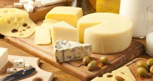 افضل انواع الجبن للرجيم , اختاري اطعمة صحية لنظام غذائي سليم
