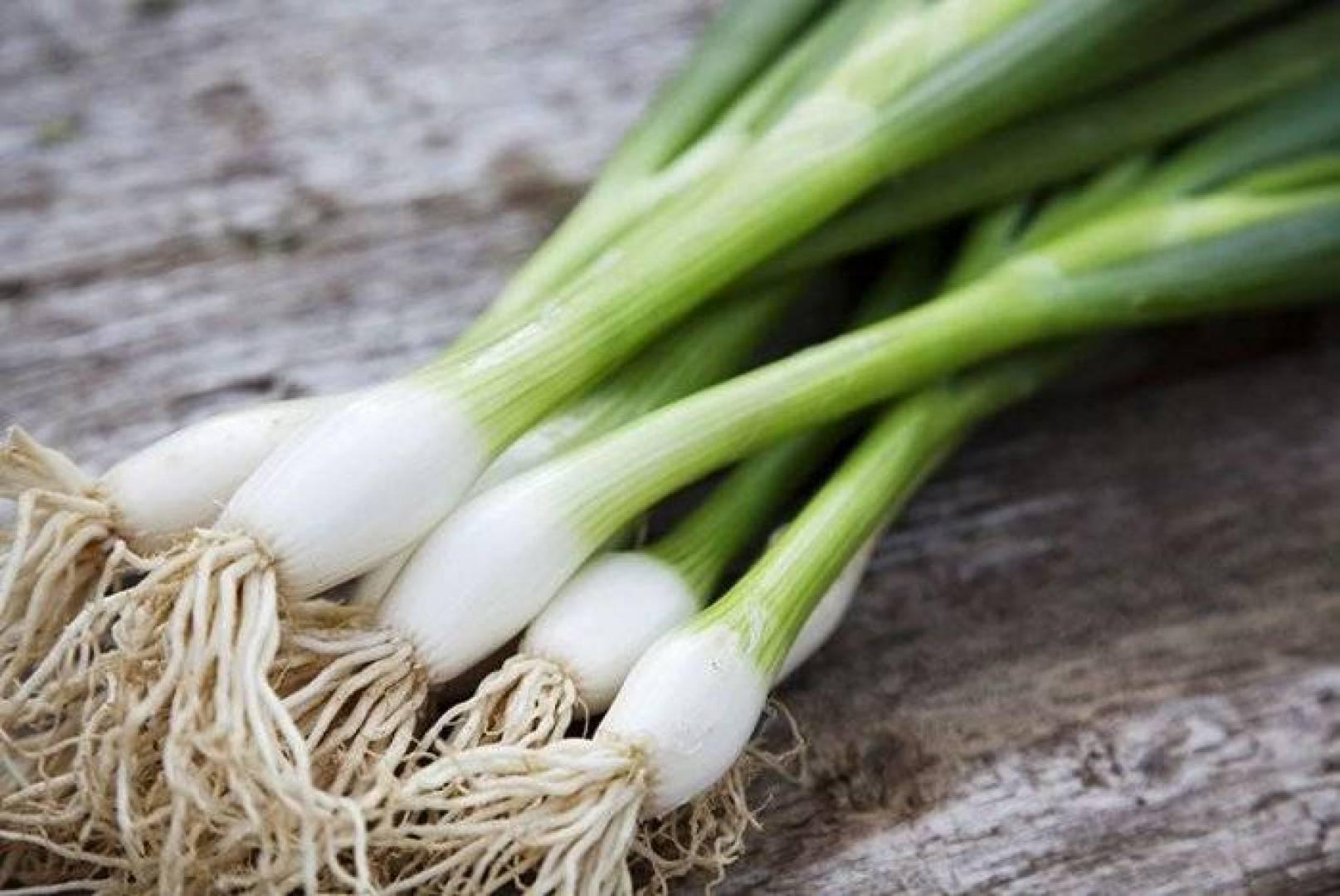 صور فوائد البصل الاخضر , عشر فوايد عجيبة هقولك عليهم لاكل البصل الاخضر