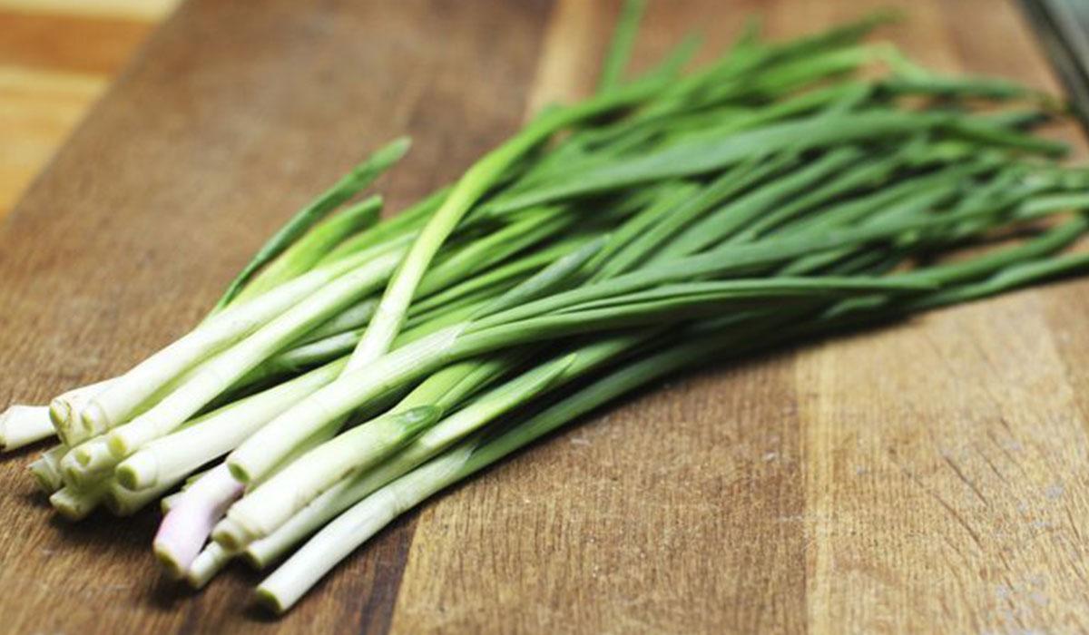صورة فوائد البصل الاخضر , عشر فوايد عجيبة هقولك عليهم لاكل البصل الاخضر