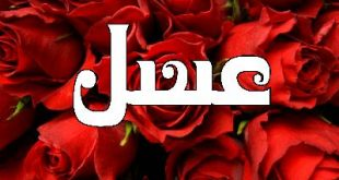 معنى اسم عسل , ارق واجمل الاسامي ومعانيها
